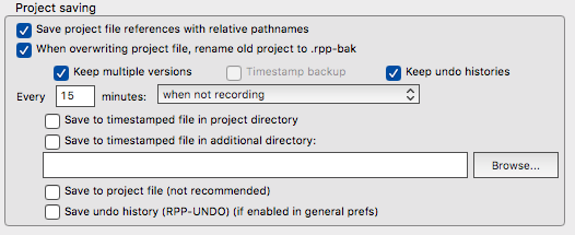 Project Versioning