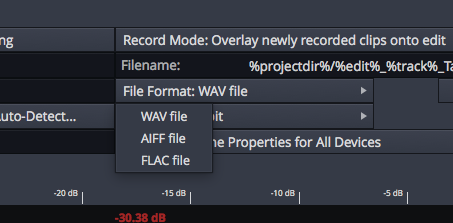 Flac format